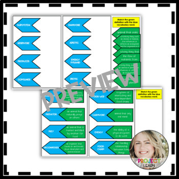 Food Web & Food Chain Vocabulary Foldable