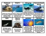 Food Web: Marine & Freshwater Comparison