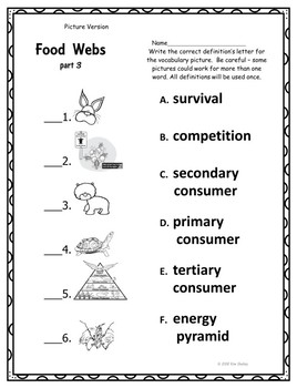 Food Web Part 3 Assessment