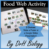 Food Web Project