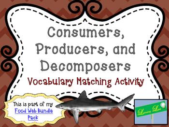Food Web Vocabulary Match