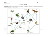 """Food Web 'What If..."""""""