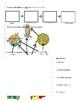 Food Web Worksheet 1