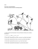 Food Web Worksheet