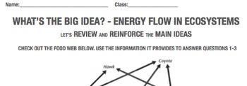 Food Web food chain ecosystem energy flow close reading 5 6 7 8 jr high school