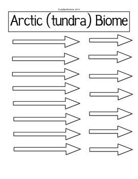 Food Web/Chain Activity Arctic Biome