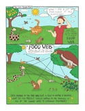 Food Webs Comic