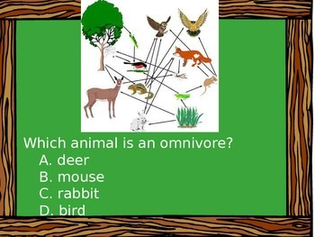 Food Webs - Are You Smarter Than a 9th Grader?