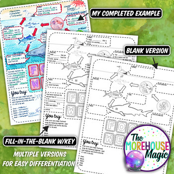 FOOD WEBS SCIENCE DOODLE NOTES, INTERACTIVE NOTEBOOK, MINI ANCHOR CHART