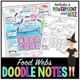 Food Webs Science Doodle Notes with PowerPoint & Quiz