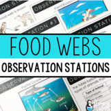 Food Webs Observation Stations | Printable and Digital | D