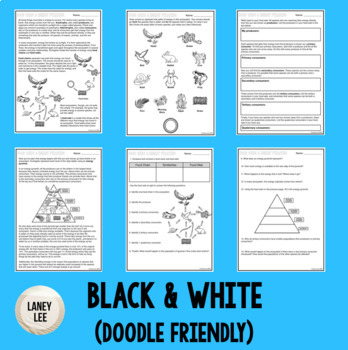 Food Chains, Food Webs, Energy Pyramids - Guided Reading + Worksheets