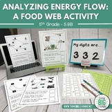Analyzing Energy Flow Food Web Activity (STAAR Review Aligned)
