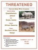 FREE! Endangered Species - Science in the Environment Lab Series