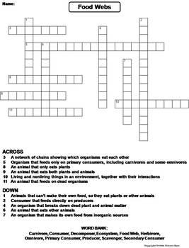 Food Webs Worksheet/ Crossword Puzzle