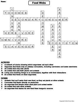 Food webs worksheet crossword puzzle by science spot tpt food webs worksheet crossword puzzle ibookread Download