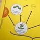 Food Webs and Environmental Change
