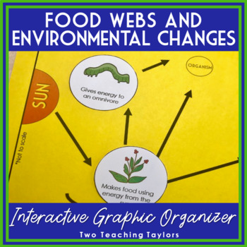 Food Webs Activity | Interactive Graphic Organizer and Task Cards