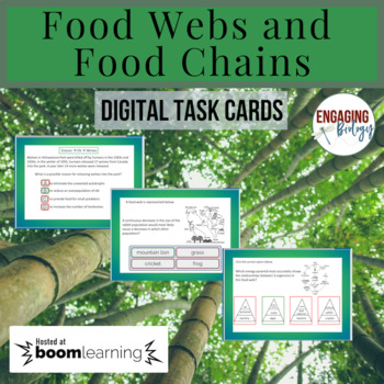 Food Webs and Food Chains Digital Task Cards