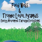 Food Webs and Trophic Pyramid Notes and Vocabulary
