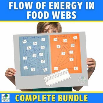 Food Webs in Ecosystems Activities | Mini Bundle