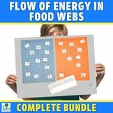 Food Webs: Flow of Energy in Ecosystems Activities Bundle