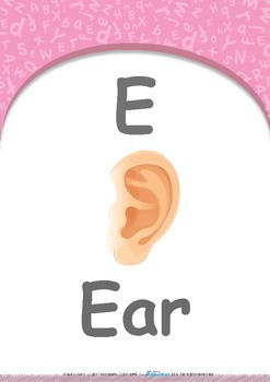 Food - Where is it? (Broccoli & Tomato) : Letter E : Ear - PN (1 year old)