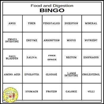 Food and Digestion BINGO
