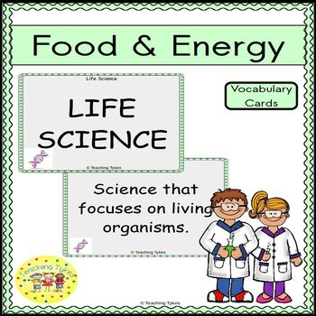 Food and Energy Vocabulary Cards