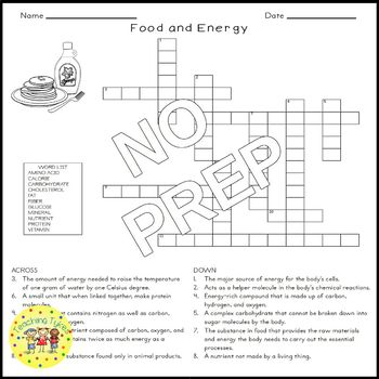 Food and Energy Science Crossword Puzzle Coloring Worksheet Middle School