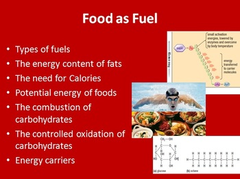 Food as fuel: how are bodies use it- Biology PowerPoint Lesson and Student Notes