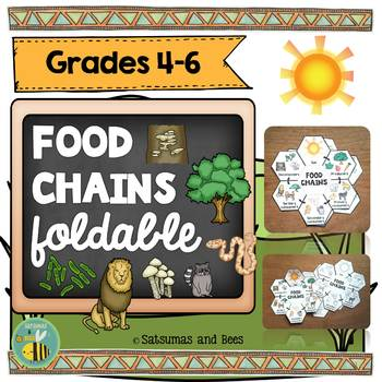 Food chains-Interactive Science Notebook foldable