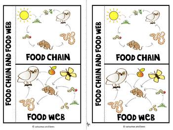 Food chains and food webs- Interactive science notebook foldable