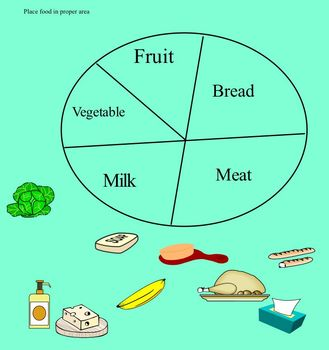 Food groups for young students