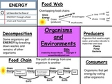 Food web and Food Chain - Energy 5th