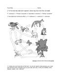 Food web student worksheet