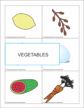 Foods Flashcards for Any Language