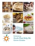 Nutrition Health Lesson: Grains