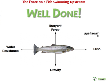 Force: The Force on a Fish Swimming Upstream - MAC Gr. 5-8