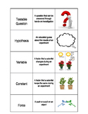 Force and Motion/Experiment Flash Cards