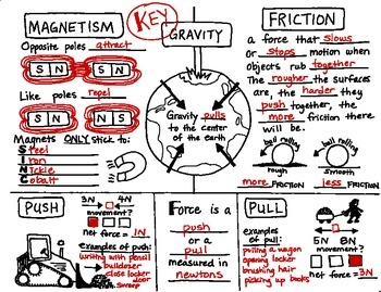 Force and Motion Foldable with KEY by Science Doodles