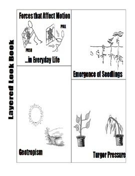 Forces that Affect Motion in Everyday Life Layered Look Foldable