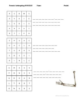 Forensic Anthropology BOGGLE!