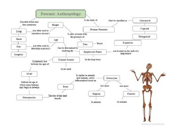 Forensic Anthropology Concept Map By Science Teacher Haven Tpt