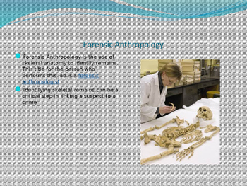 Forensic Anthropology Power Point Presentation