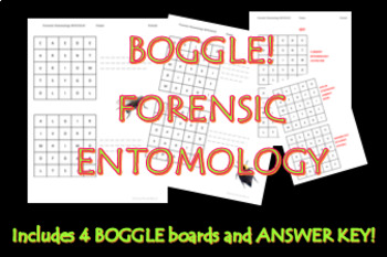 Forensic Entomology BOGGLE!