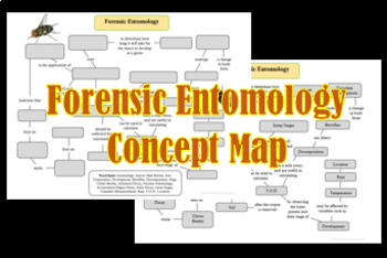 Forensic Entomology Concept Map By Science Teacher Haven Tpt