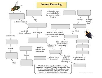 Forensic Entomology Concept Map