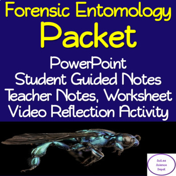 Forensic Entomology Packet:PowerPoint, Student Guided Notes, Worksheet, Activity