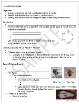 Forensic Entomology Powerpoint Student Guided Notes Teacher Notes Worksheet
